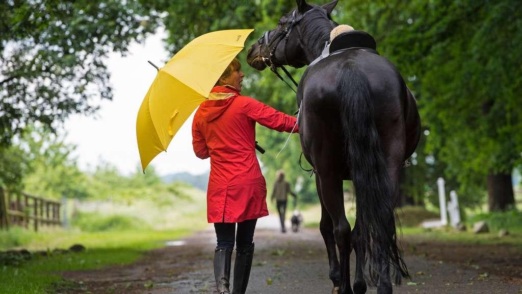Wetter aktuell: Wechselhaft und regnerisch - Keine Schönwetterlage in Sicht