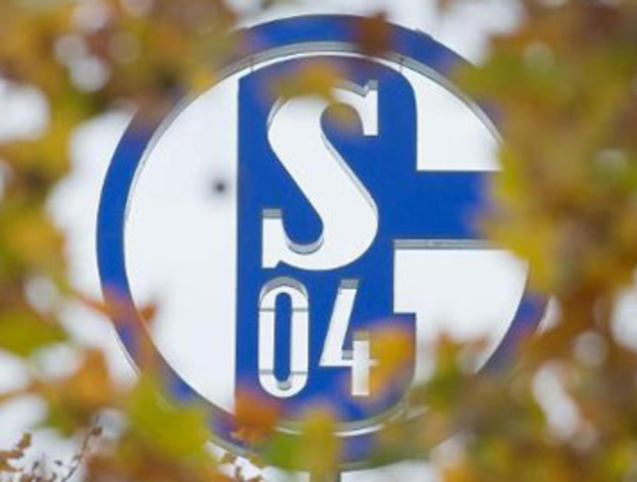 Schalke Tannenbaum.Schalke Fahne Auf Dortmunder Weihnachtsbaum Gerüstbauer Aus