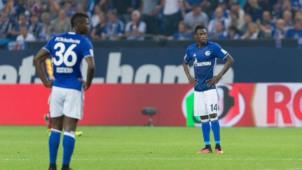 Neuzugänge Schalke 04