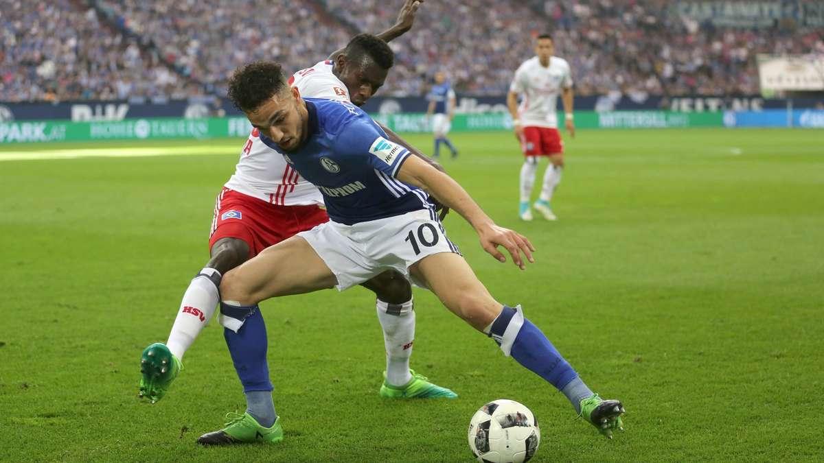 Hamburger Sv Schalke 04