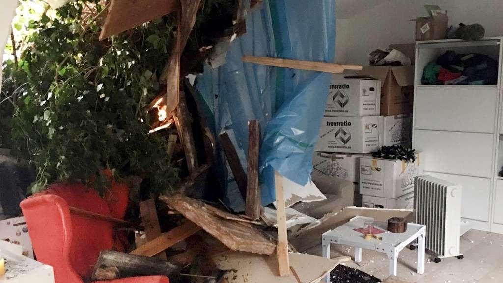 Baum krachte in sein Wohnzimmer: Zigarette rettet Andreas Kallweits ...