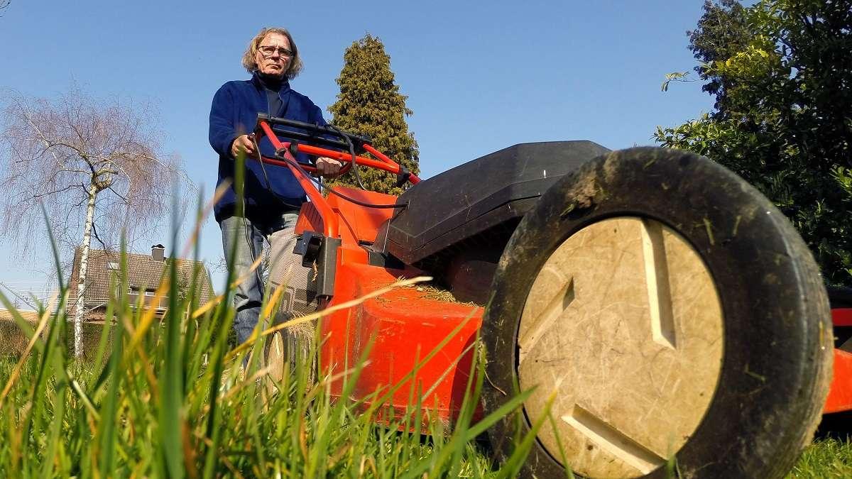 Schimmel auf dem Rasen? So können Sie effektiv dagegen