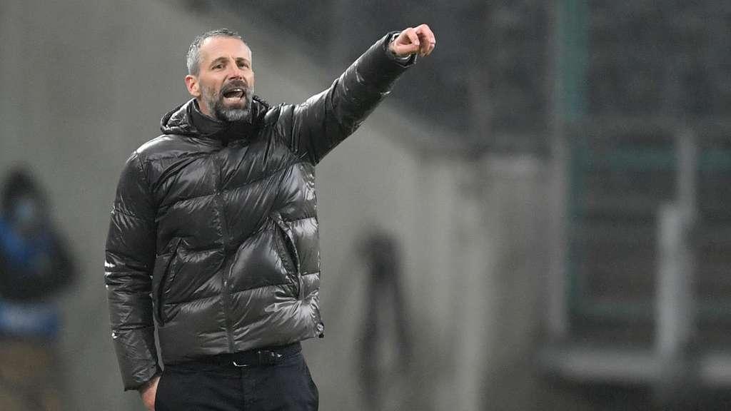 Neuer Trainer Dortmund